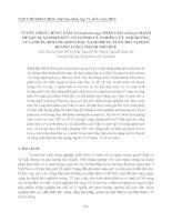 TUYỂN CHỌN CHỦNG NẤM Trichoderma spp. PHÂN GIẢI cellulose MẠNH ĐỂ SẢN XUẤT PHÂN HỮU CƠ VI SINH VÀ NGHIÊN CỨU ẢNH HƯỞNG CỦA CHÚNG ĐỐI VỚI GIỐNG ĐẬU XANH 208 VỤ XUÂN 2011 TẠI HTX HƯƠNG LONG, THÀNH PHỐ HUẾ pptx