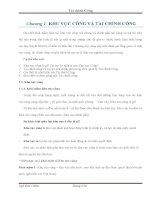 Chương 1 khu vực công và tài chính công