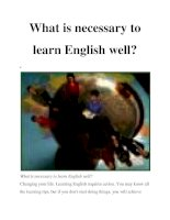 What is necessary to learn English well? pot