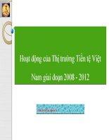 Hoạt động của Thị trường Tiền tệ Việt Nam giai đoạn 2008 - 2012