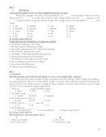 bộ đề kiểm tra hkii tiếng anh lớp 6 (phần 1)