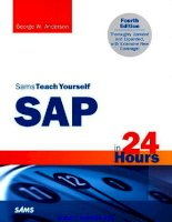 sams teach yourself sap in 24 hours 4th edition