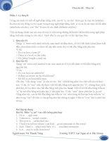 Chuyên đề mạo từ trong tiếng Anh