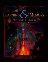 learning and memory - the brain in action