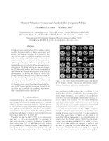 robust principal component analysis for computer vision