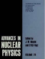advances in nuclear physics.. v. 24