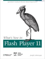 whats new in flash player 11