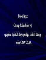 Bài giảng môn Công đoàn bảo vệ quyền, lợi ích hợp pháp, chính đáng của CNVCLĐ