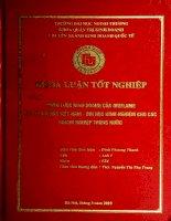 Chiến lược kinh doanh của Oriflame tại thị trường Việt Nam. Bài học kinh nghiệm cho các doanh nghiệp trong nước