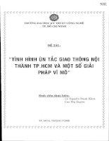 Đề tài : Tình hình ùn tắc giao thông nội thành Thành Phố Hồ Chí Minh và một số giải pháp vĩ mô