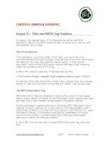 seo 101 lesson 5 sample