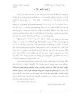 MỘT SỐ GIẢI PHÁP NHẰM TĂNG CƯỜNG THU HÚT ĐẦU TƯ TRỰC TIẾP NƯỚC NGOÀI VÀO VIỆT NAM HIỆN NAY