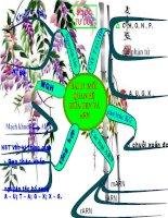Giáo án sinh học lớp 9 tham khảo Mối quan hệ giữa Gen và ARN