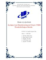 Áp dụng lean manufacturing tại công ty TNHH wonderful saigon electric