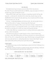Luận văn Tin học pdf
