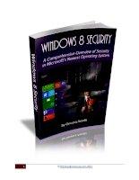 Windows 8 security