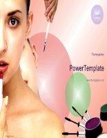 Mẫu slide dành cho makeup light anix