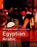the rough guide phrasebook egyptian arabic