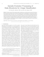 genetic evolution processing of data structures for image classification