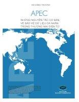 APEC Những nguyên tắc cơ bản về bảo vệ dữ liệu cá nhân trong thương mại điện tử potx