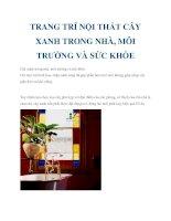TRANG TRÍ NỘI THẤT CÂY XANH TRONG NHÀ, MÔI TRƯỜNG VÀ SỨC KHỎE pdf