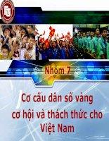 Cơ cấu dân số vàng   cơ hội và thách thức cho   Việt Nam