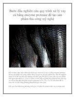 Bước đầu nghiên cứu quy trình xử lý vảy cá bằng enzyme protease để tạo sản phẩm thủ công mỹ nghệ pdf