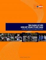 Cơ cấu dân số vàng tại Việt Nam - Thực trạng và giải pháp cho vấn đề dân số vàng tại Việt Nam