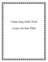 Cánh cổng thiền Torii trong văn hóa Nhật pdf
