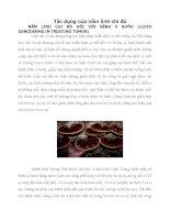 Tác dụng của nấm linh chi đỏ