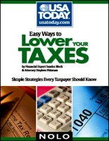 easy ways to lower your taxes, simple strategies every taxpayer should know (2008)