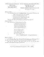 Đề thi năng khiếu môn văn huyện Sơn Dương lớp 8 năm 2013