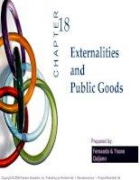 bài giảng kinh tế vi mô - chương xviii bên ngoài và hàng hóa công