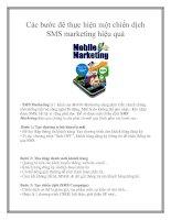 Các bước để thực hiện một chiến dịch SMS marketing hiệu quả pptx