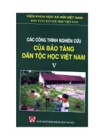 Các công trình nghiên cứu của bảo tàng dân tộc học Việt Nam pptx