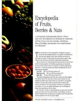 encyclopedia of fruits & berries