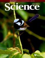 Tạp chí khoa học số  2007-08-17