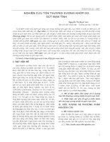 NGHIÊN CỨU TỔN THƯƠNG XƯƠNG KHỚP DO GÚT MẠN TÍNH pptx