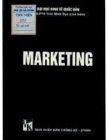 Marketing - trần minh đạo