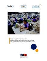 Khuyến nghị phương án đàm phán Chương Lao động và Giải quyết tranh chấp lao động Hiệp định Đối tác Thương mại Xuyên Thái Bình Dương docx