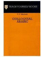 teach yourself colloquial egyptian arabic (1962)