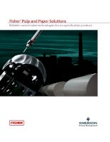 Fisher ® Pulp and Paper Solutions Reliable control valve technologies for on-specification product. pptx