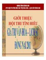 Giá trị văn hóa - lịch sữ đồng nai 2011 pdf