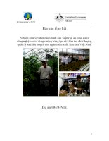 nghiên cứu xây dựng mô hình sản xuất rau an toàn dạng công nghệ cao và tăng cường năng lực về kiểm tra chất lượng quản lý sau thu hoạch cho ngành sản xuất rau của việt nam