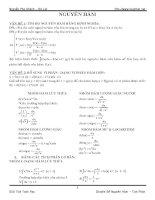 Tóm tắt lý thuyết và các bài toán cơ bản về nguyên hàm tích phân