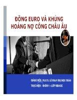 tiểu luận đồng euro và khủng hoảng nợ công châu âu