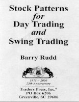 barry rudd - stock patterns for day trading and swing trading