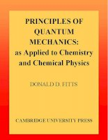 principles of quantum mechanics, as applied to chemistry and chemical physics