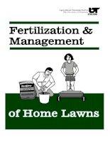 fertilization & management of home lawns