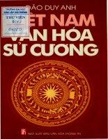 Việt Nam Văn Hóa Sử Cương - Đào Duy Anh